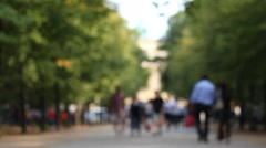 Sightseeing in the park at brandenburg gate Stock Footage