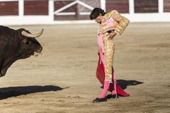 bullfighter curro diaz bullfighting with the crutch in the bullring of linare - stock photo