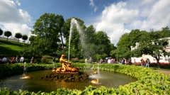 People visit fountain at Peterhof. Stock Footage