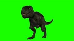 Tyrannosaurus Rex Dinosaur walks - Loopable green screen - 4k Stock Footage
