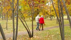 Romantic Fall Stock Footage