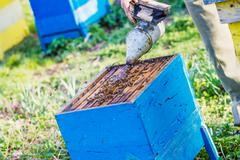 beekeeper checking hive - stock photo