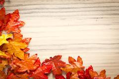 foliage, autumn leaves - stock photo