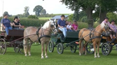 Stock Video Footage of 4K Sport Athlete Horse Cart riding competition prize giving