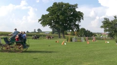 4K FHD Time lapse Sport Athlete Horse Cart riding competition prize giving Stock Footage