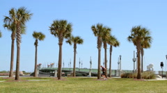 St. Augustine Bridge of Lions with Traffic, Palm Trees, and Jogger Stock Footage