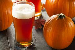 Frothy orange pumpkin ale Stock Photos