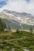 Idyllic alpine landscape at austria - stock photo