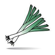freehand drawing leek icon - stock illustration
