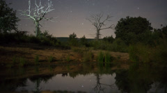Night Time Lapse of stars and illuminated Dead Chestnut tree Stock Footage