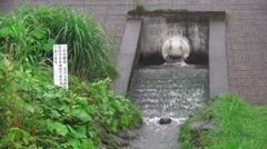 Water Flowing From Drain Pipe In To Canal In Forest Near Tama River 4K Stock Footage