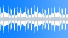 Electro-Funk DUB LOOP Stock Music