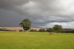 storm clouds over rural landscape - stock photo