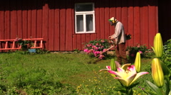 Gardener man with trimmer cut grass between flowers near house Stock Footage