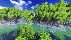 Red mangove shore - stock illustration