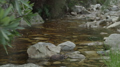 4K+ R3D - Mountain stream - clear water over rocks, wide. Nature clean pristine - stock footage