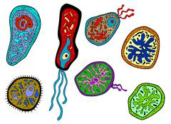 colorful amebas, amoebas, microbes and germs set - stock illustration