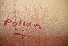 Pollen Text Drawn On Red Car Hood Stock Photos
