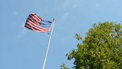 American (USA - United States of America) flag - green tree - blue sky - sunny - stock footage