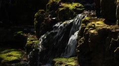 Small waterfall, rushing water, moss, pools of sunlight, summer Stock Footage
