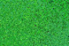 abstract green squares background - stock illustration