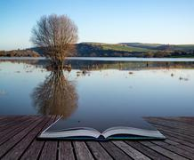 Book concept mirror reflections of landscape in flood plains in winter Stock Photos