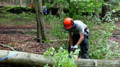 Cutting wood with a chainsaw wearing a safety helmet Stock Footage