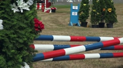 Horse jumping competition. Stock Footage