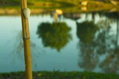 fishing pole with float and hook - stock photo