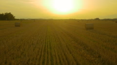 AERIAL: Bales of hay on a field at sunset Stock Footage