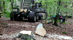 Using a huge grapple on a boom for collecting logs in the forest Stock Footage