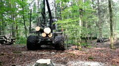 Forwarder in the forest is moving away sith the tree trunks loaded Stock Footage