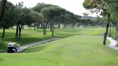 Algarve Golf Tee Shot C 10x Stock Footage