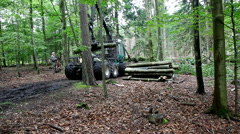 Heavy equipment vehicle called a forwarder is used in the forest Stock Footage