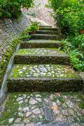 Stock Photo of stairs stone path in garden