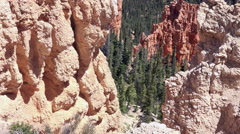 Bryce Canyon Utah beautiful valley rocks pine trees 4K 152 Stock Footage