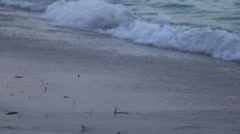 Beach Shore Line Waves Stock Footage
