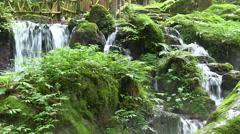 Uriwari Waterfall, Fukui Prefecture, Japan Stock Footage