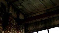 Pigeons Under the Roof of an Abandoned Building Stock Footage