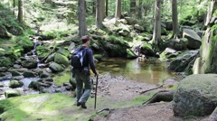 Hiker in the beautiful mountain forest. Narnia. Stock Footage