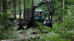 Working with heavy industrial equipment in the forest Stock Footage