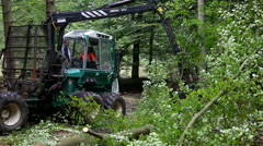 Forest workers working with the hydraulic boom Stock Footage