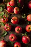 Raw organic red gala apples Stock Photos