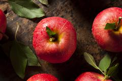 raw organic red gala apples - stock photo