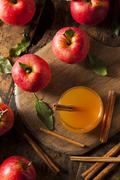 organic apple cider with cinnamon - stock photo