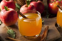 Organic apple cider with cinnamon Stock Photos