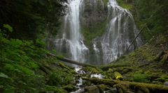 Proxy Falls, Central Oregon (tracking) Stock Footage