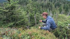 Man eats blueberries straight from the bush in the mountains. Raw Food Stock Footage