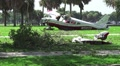 Plane Crash Wreckage In Tropical Park HD Footage