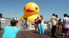 Giant Rubber Duck Selfies Stock Footage